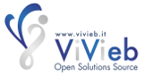 ViVieb Corporate Web Site